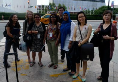 2011 CEDAW Singapore Delegation Photo